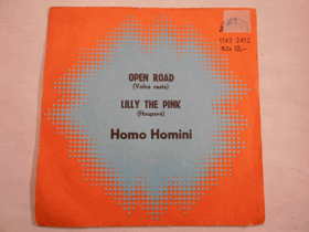 Open road - Lilly the pink